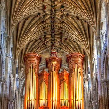 Pipe organs and ceilings Collection