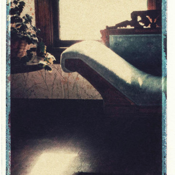 Polaroid transfers Collection