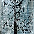 Pole with Transformer Collection