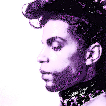 Prince Rogers Nelson Collection