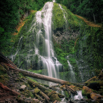 Proxy Falls Series - Eugene Oregon Collection