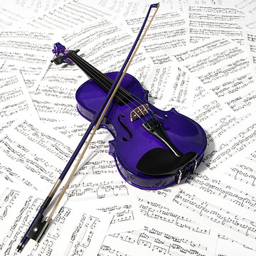 Purple Violin Collection