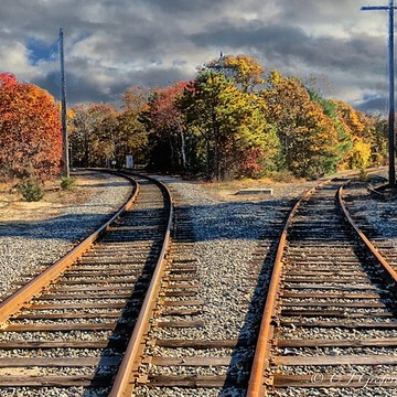 Railroad Tracks Collection
