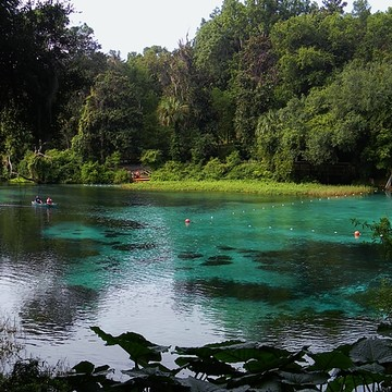 Rainbow Springs and the Rainbow River Collection