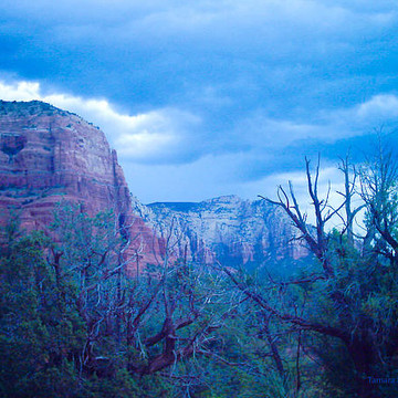 Red Rocks in Sedona Arizona Collection