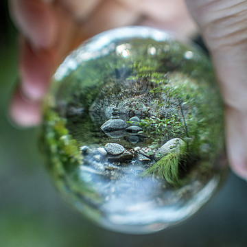 Refraction and Perspective Photography Collection