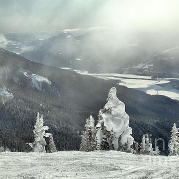 Revelstoke Mountain Resort Collection