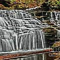 Ricketts Glen State Park - Pennsylvania Collection