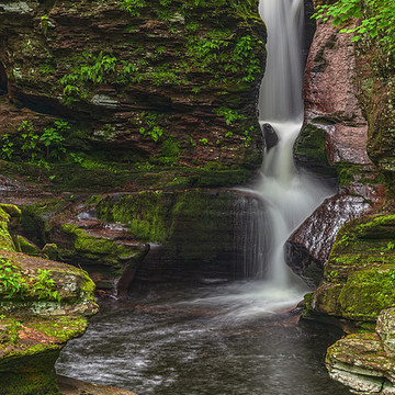Ricketts Glen State Park Collection