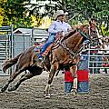 Rodeo Barrel Racing Collection