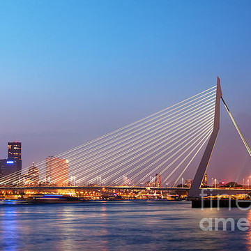 Rotterdam and The Hague Collection