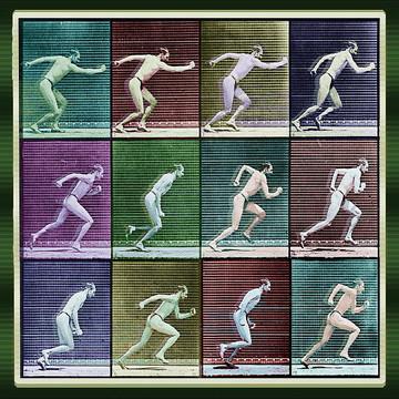Rubino Time Lapse Motion Studies Collection