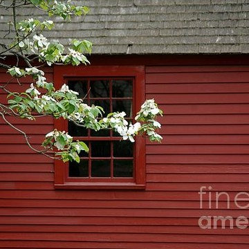 Rustic New England Collection