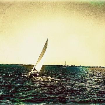 Sailboats Collection