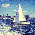 San Diego Scenes by Glenn Collection