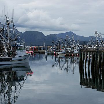 Sand Point Alaska Collection