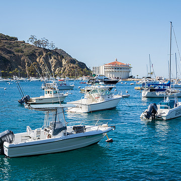 Santa Catalina Island Collection