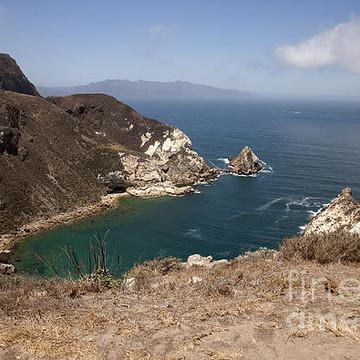 Santa Cruz Channel Island Collection