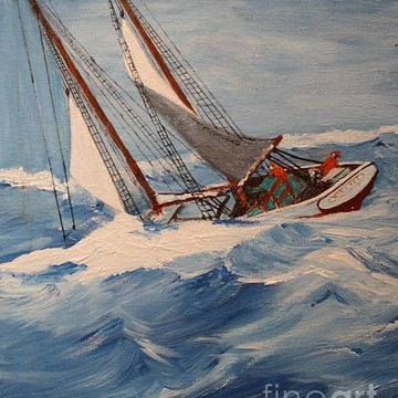Schooner Gallery Collection