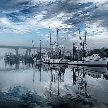 Sea Islands of the South - inc Savannah area Collection
