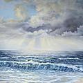 Seascape Art Collection