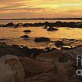 Seascapes - Ocean Views Collection
