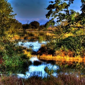 Seascapes Lakes Ponds Collection