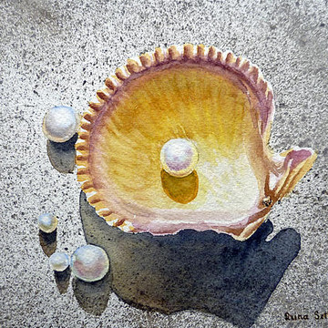 Seashells Beach Treasures Collection