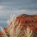 Sedona Collection