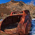 Sego Utah Collection