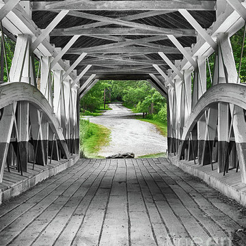 Selective  Color Collection