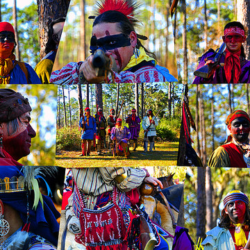 Seminole Culture Collection