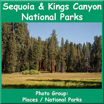 Sequoia Kings Canyon Collection