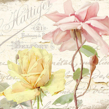 Shabby Cottage Collection