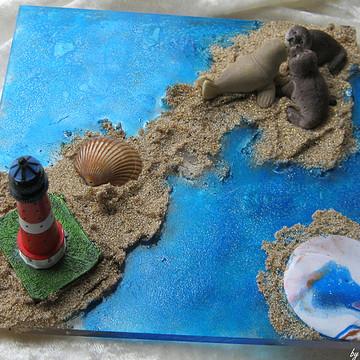 Shells - ocean wonders ....Muscheln - Ozeanwunder Collection