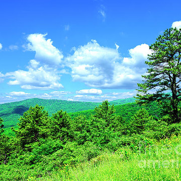 Shenandoah National Park Collection
