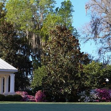 Sholom Park Ocala Florida Collection