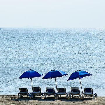 Shore Scenes Collection