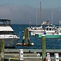 Shores and Harbors of New England Collection