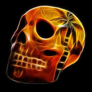 Skulls Collection