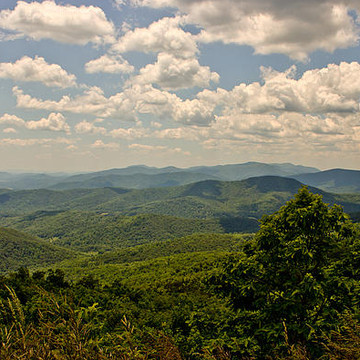 Skyline Drive Collection
