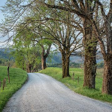 Smoky Mountain National Park Collection