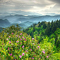 Smoky Mountains-Blue Ridge Collection