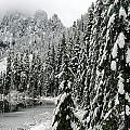 Snohomish National Forest and Lake 22 Collection