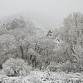 Snow and Winter Scenery Collection