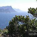 South Africa photos Collection