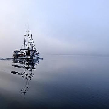Southeast Alaska Collection