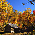 Southern Appalachian Mountains Collection
