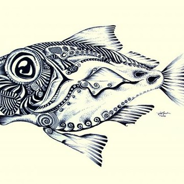 Species-specific Abstract Fish Art