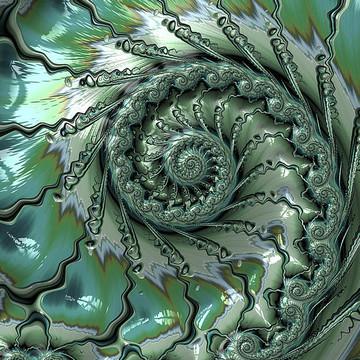 Spirals Collection